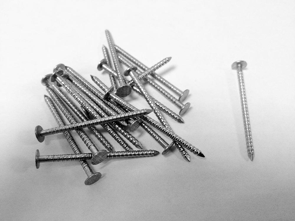 Stainless Steel Annular Ring Shank Cedar Shingle Nails